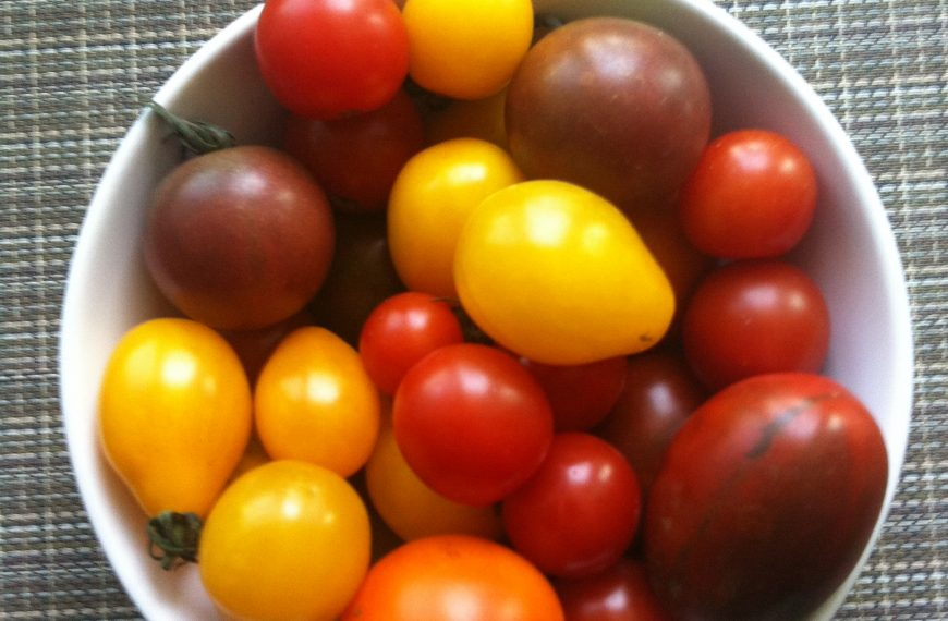 Ontario heirloom cherry tomatoes