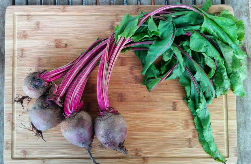 Cooking with beets – can you cook the stems?