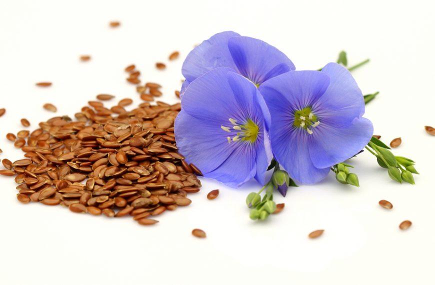 Omega Crunch flax seed giveaway